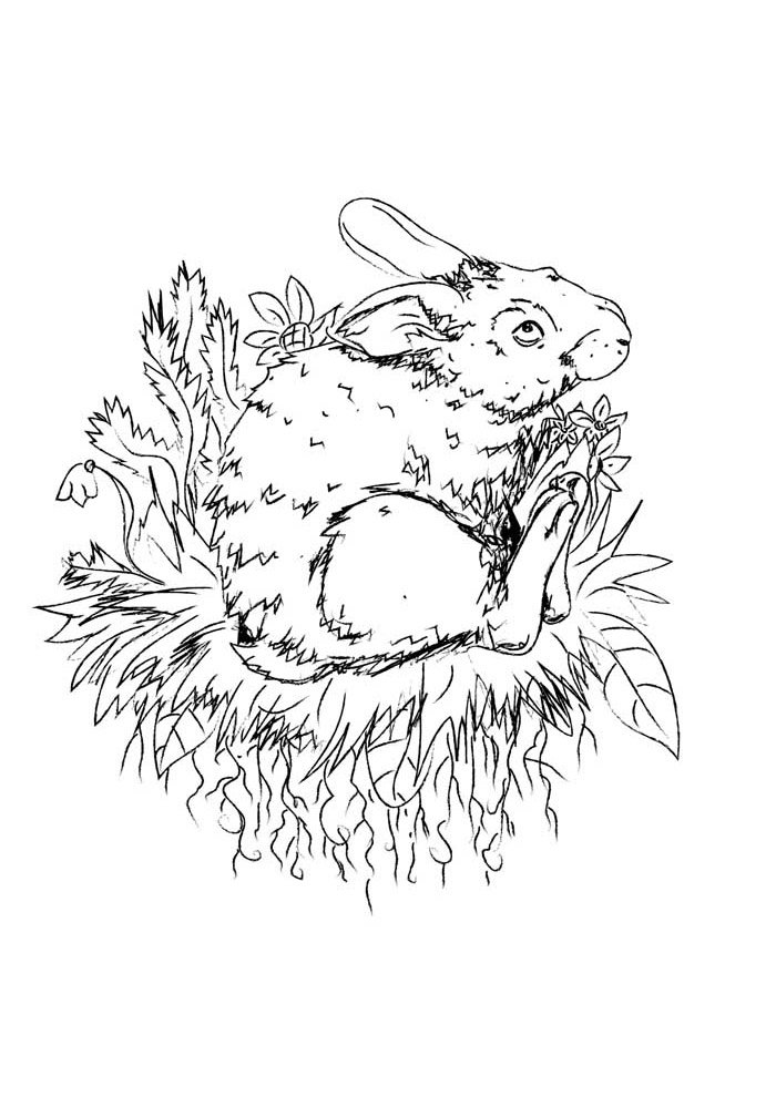 conejo para colorear 41