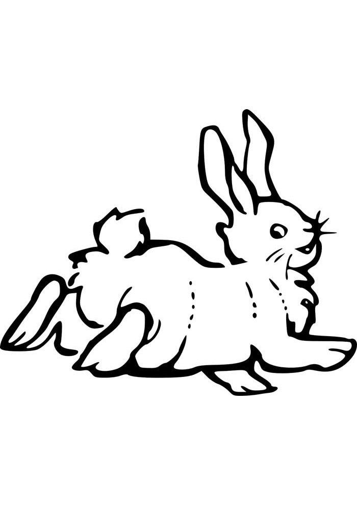 conejo para colorear 42