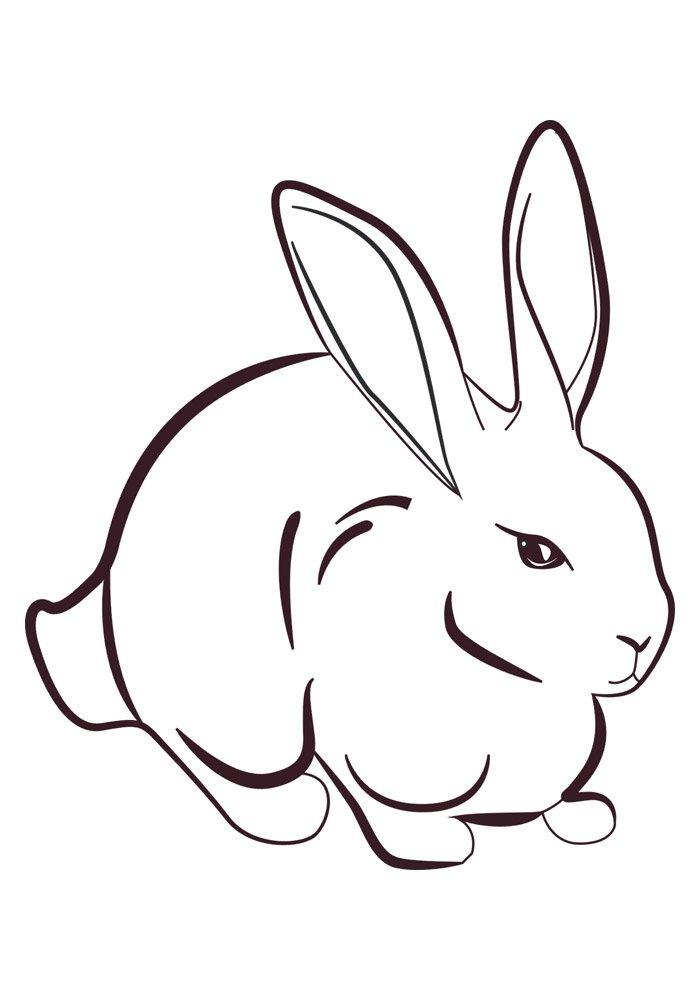 conejo para colorear 44