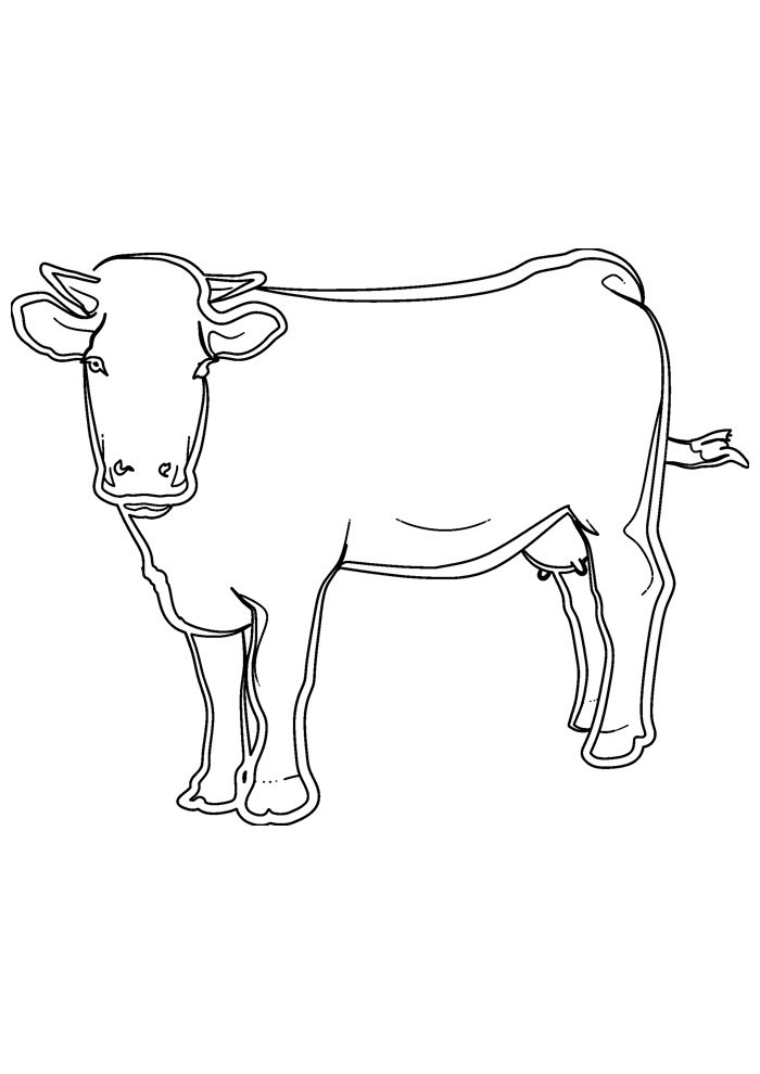 cow coloring page 21