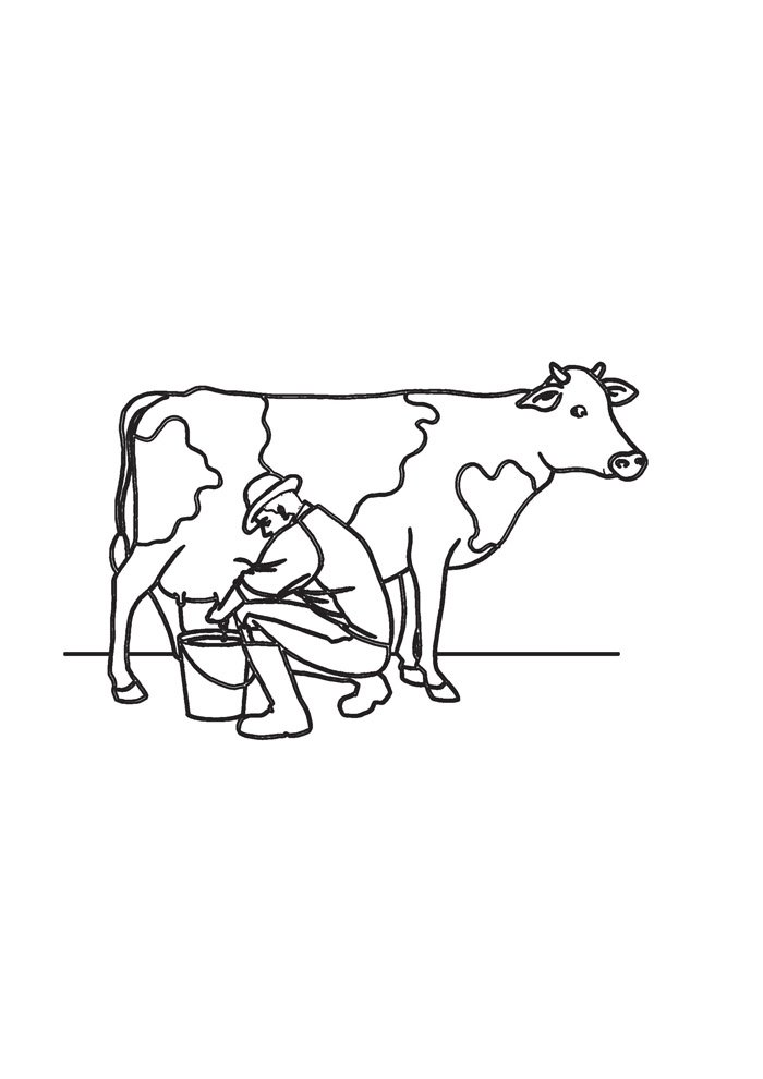 cow coloring page 30
