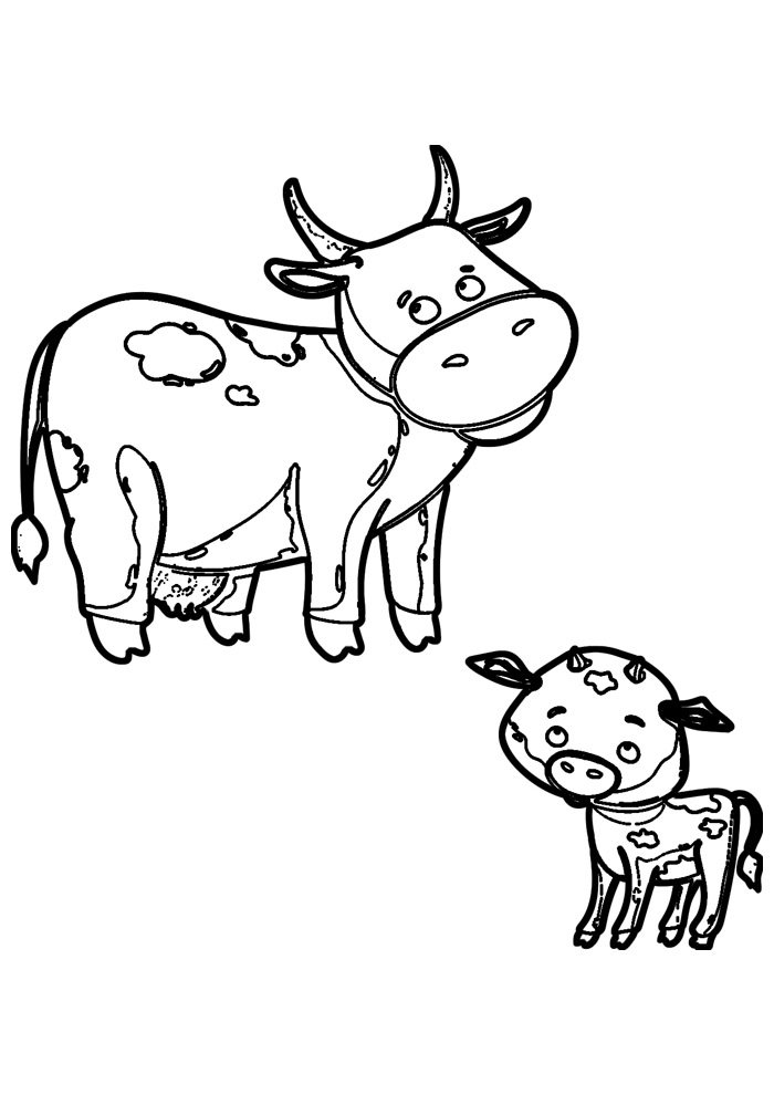 cow coloring page 32