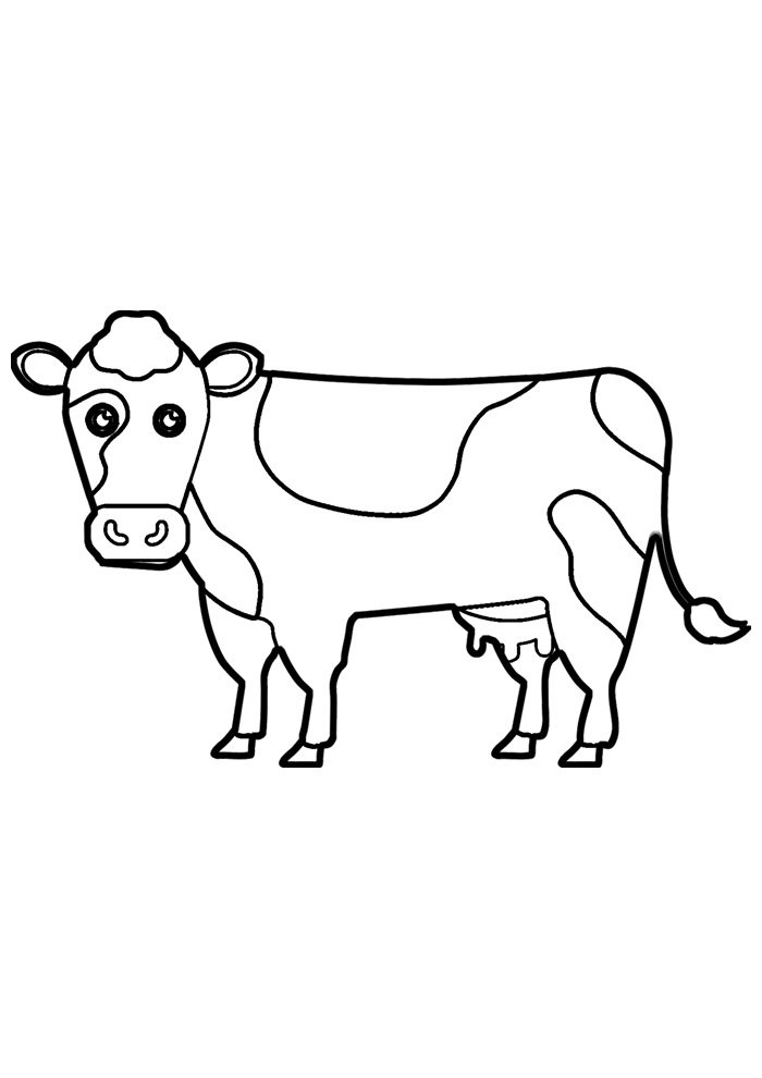 cow coloring page 37