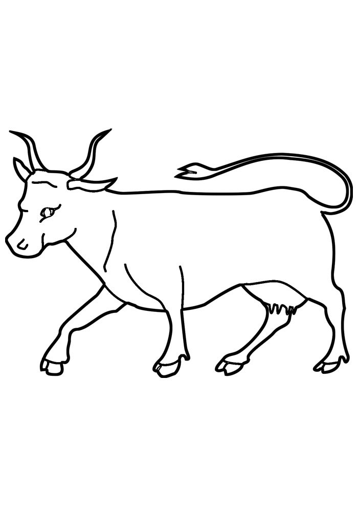 cow coloring page 8