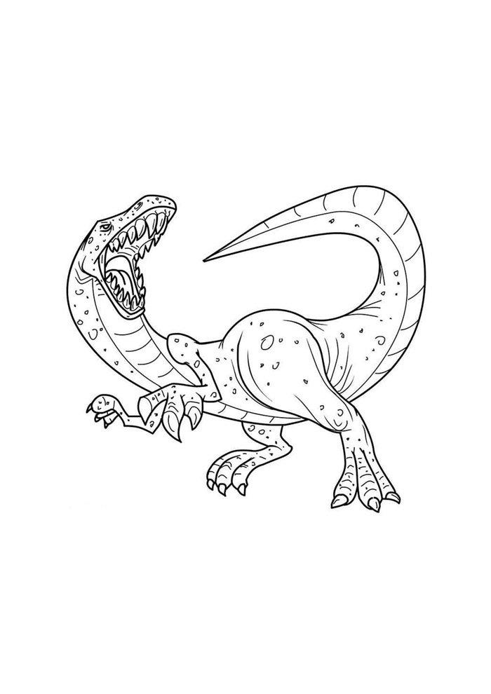 dinosaurio para colorear 49