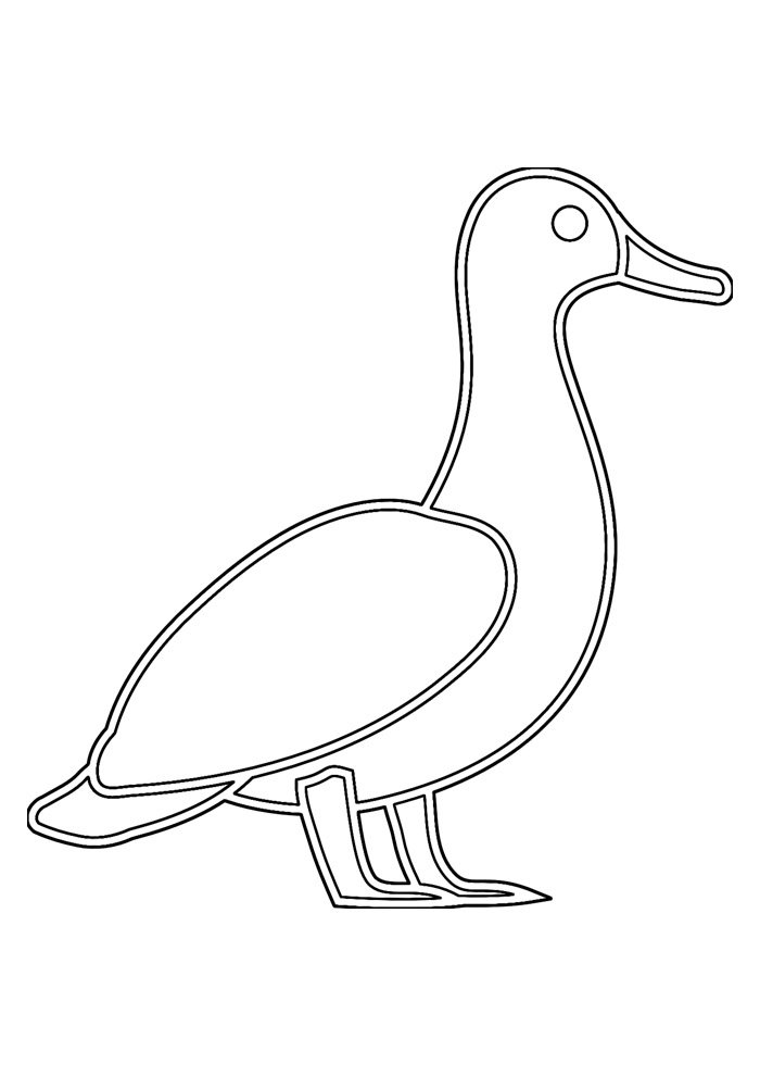 duck coloring page 22