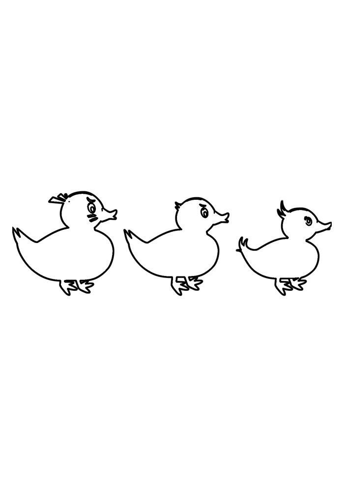 duck coloring page 26