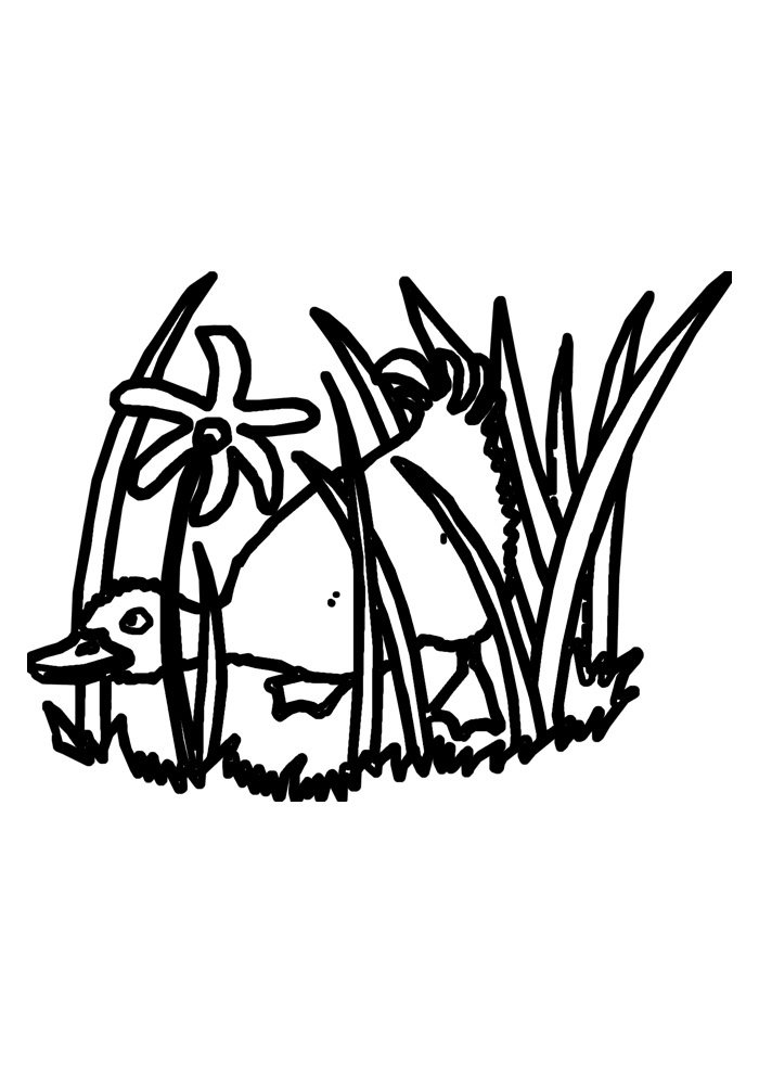 duck coloring page 29