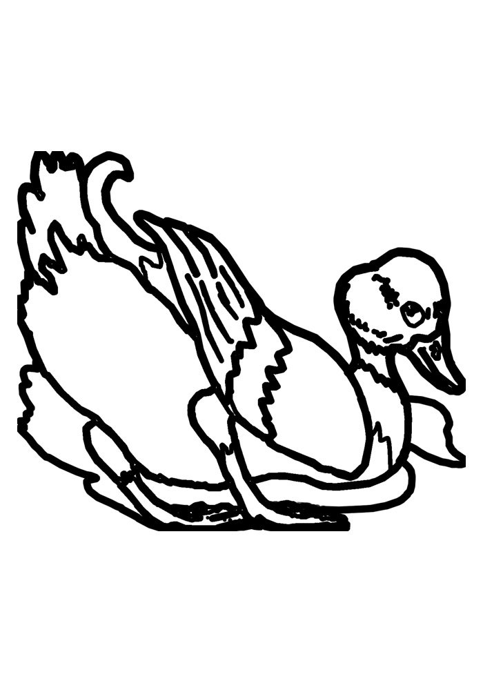 duck coloring page 4