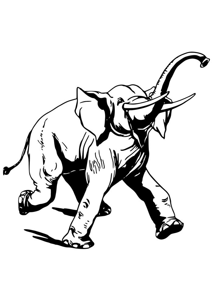 elephant coloring page 7