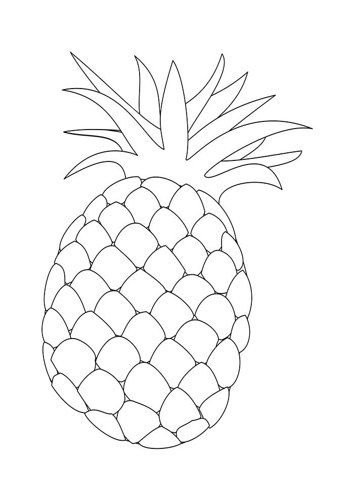fruit coloring page 11