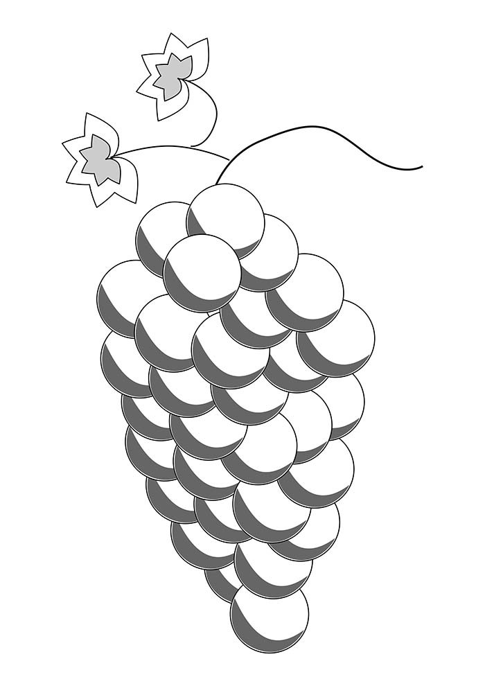 fruit coloring page 16