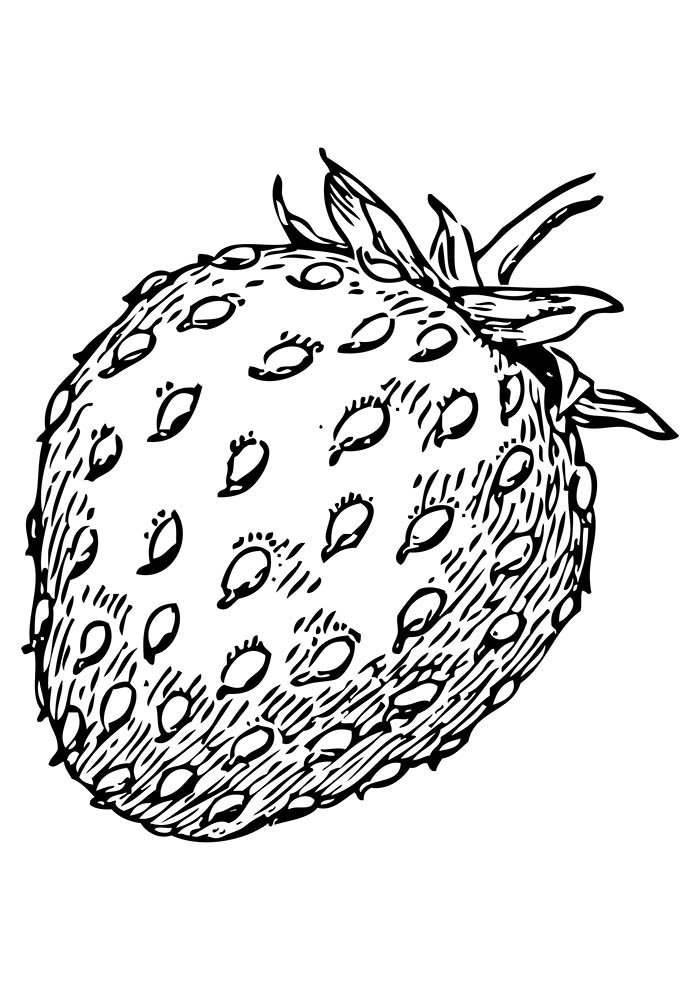 fruit coloring page 32