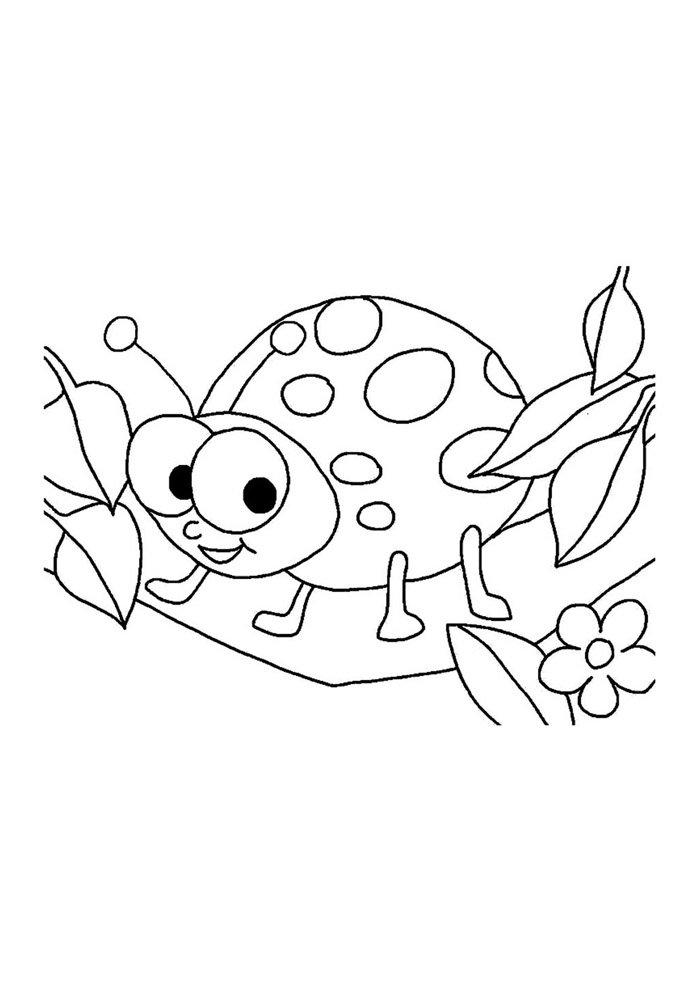 ladybug coloring page 11