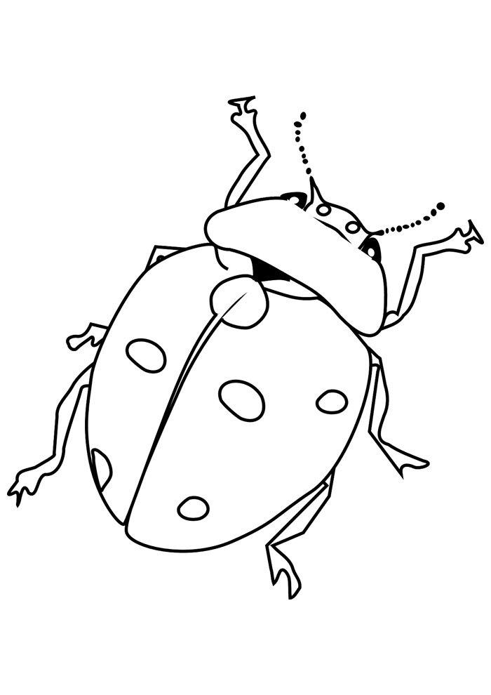 ladybug coloring page 17