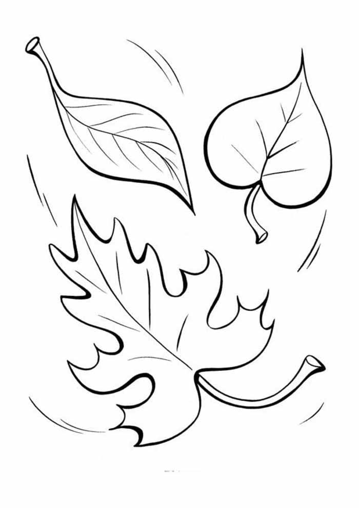 leaves coloring page for kids