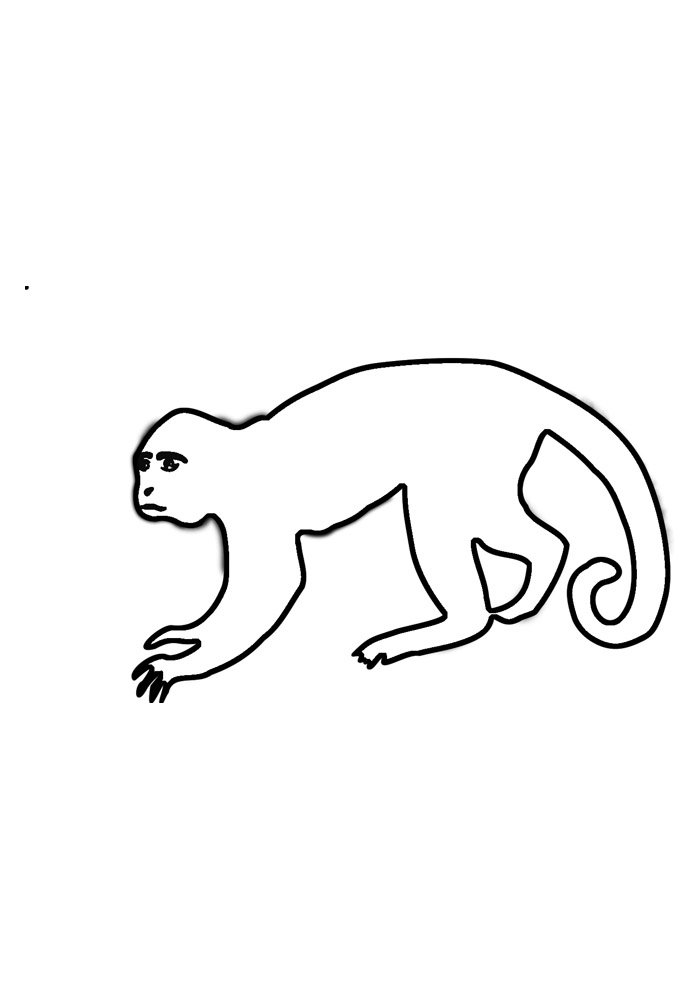 monkey coloring page 1