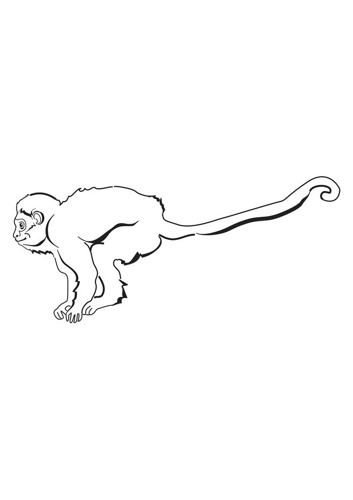 monkey coloring page 19