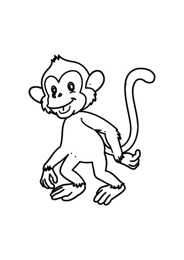 monkey coloring page 40
