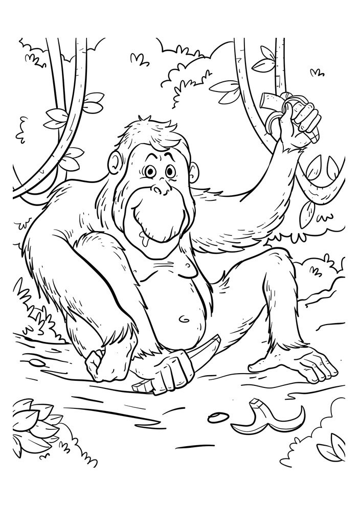 monkey coloring page 49