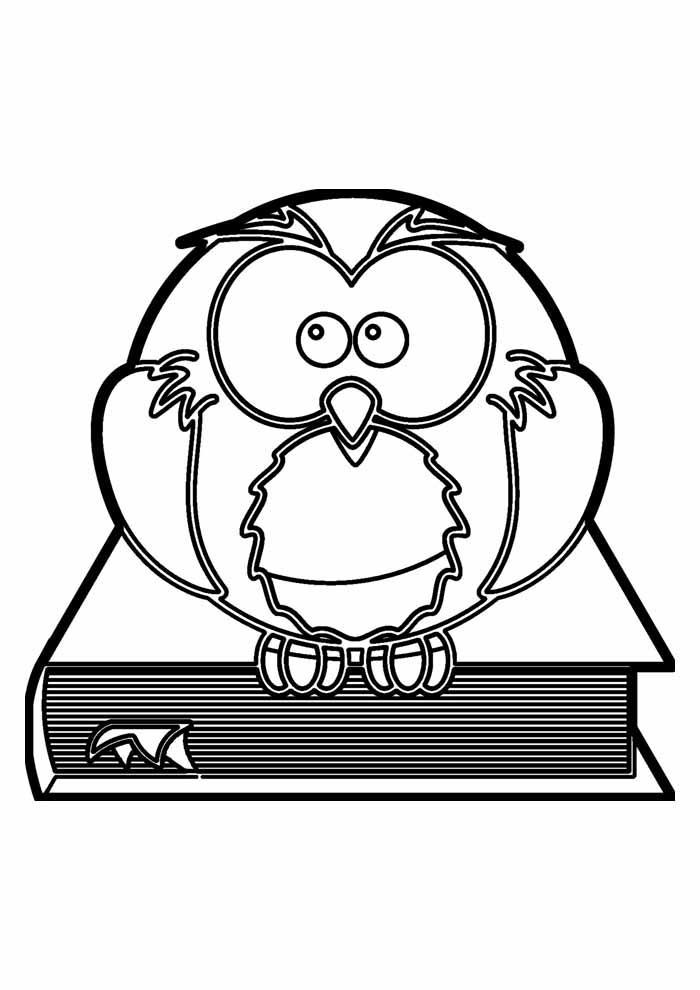 owl coloring page 11