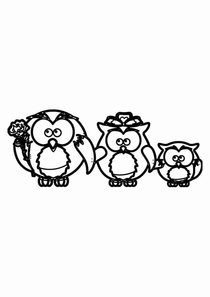 owl coloring page 17