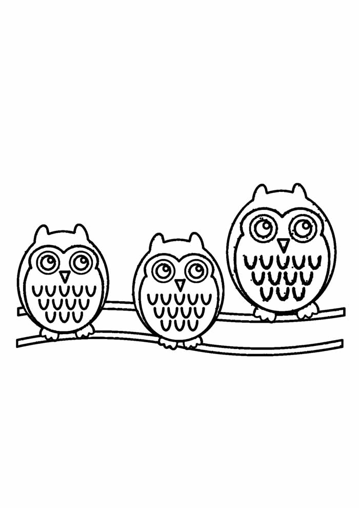 owl coloring page 20