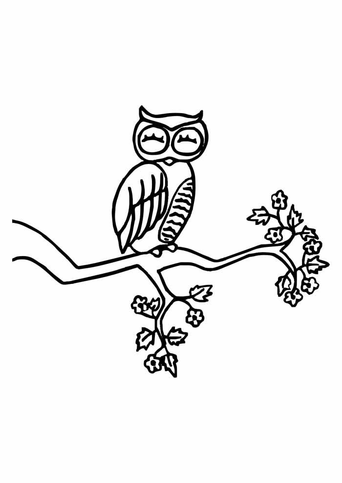 owl coloring page 21
