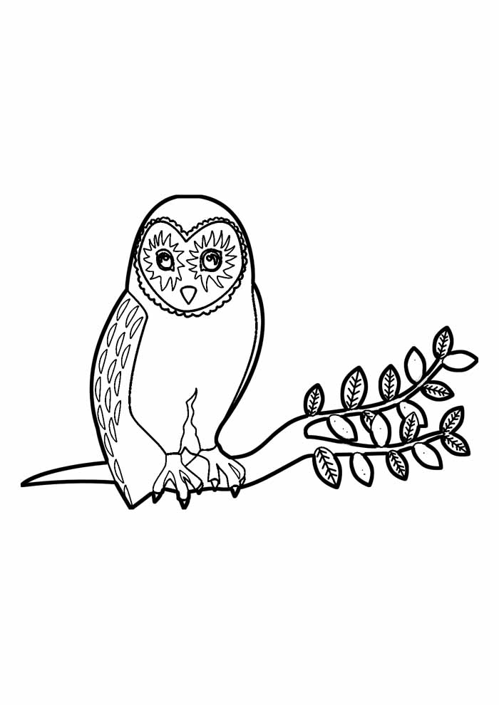 owl coloring page 28