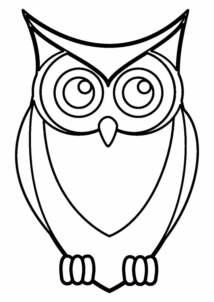 owl coloring page 29
