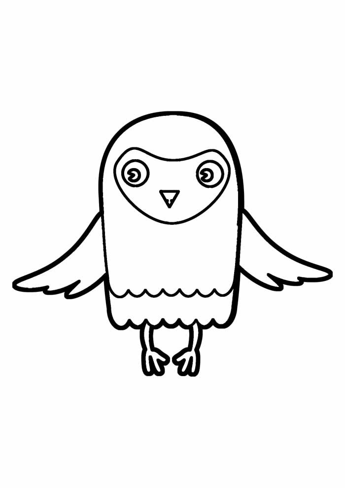 owl coloring page 31