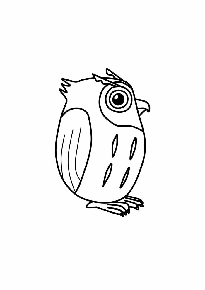owl coloring page 32