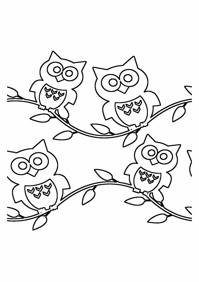 owl coloring page 33