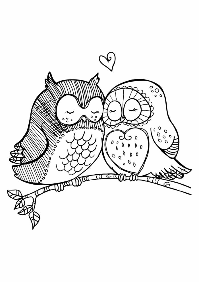 owl coloring page 6