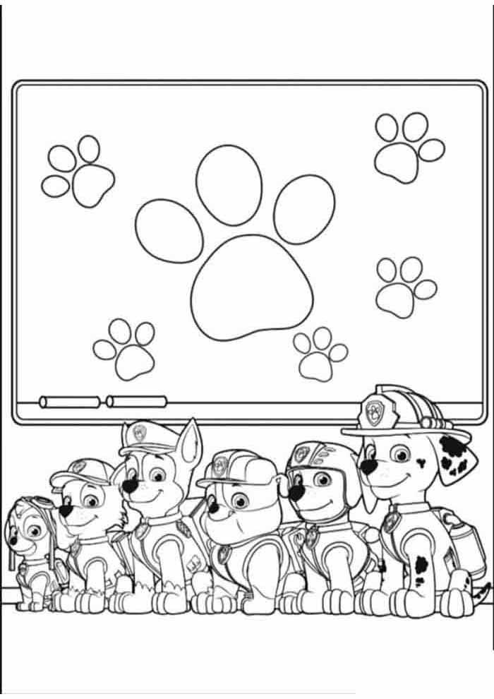 paw patrol para colorear 5