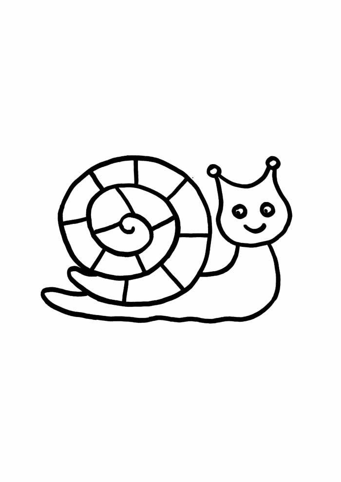 snail coloring page for kids