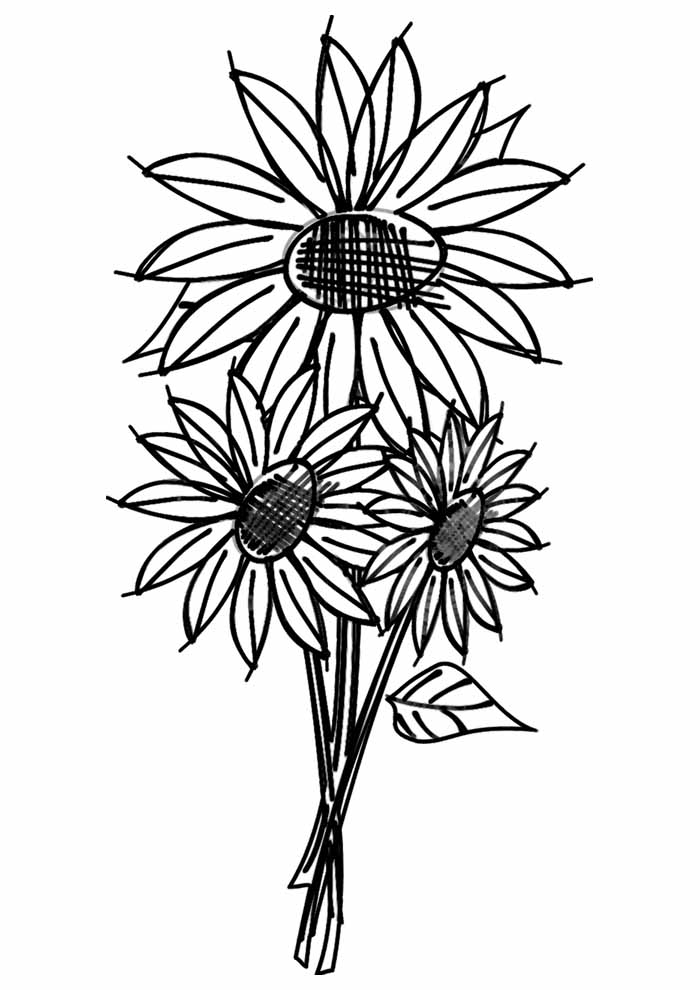 sunflower coloring page 10