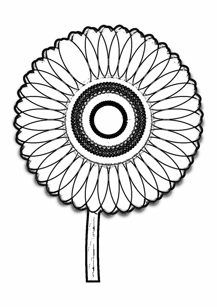 sunflower coloring page 14