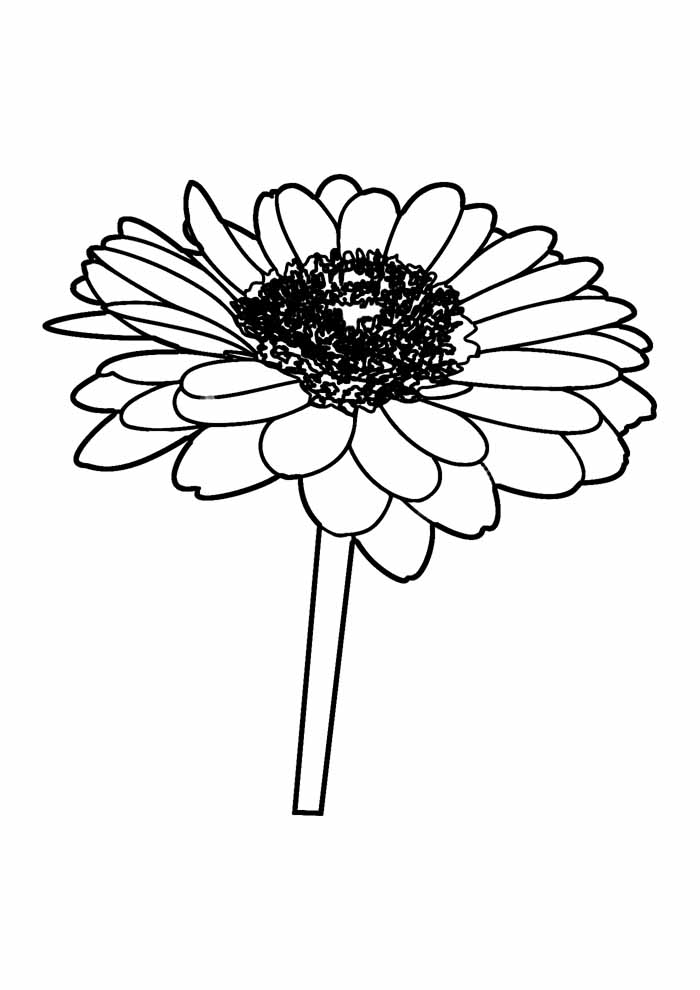 sunflower coloring page 15