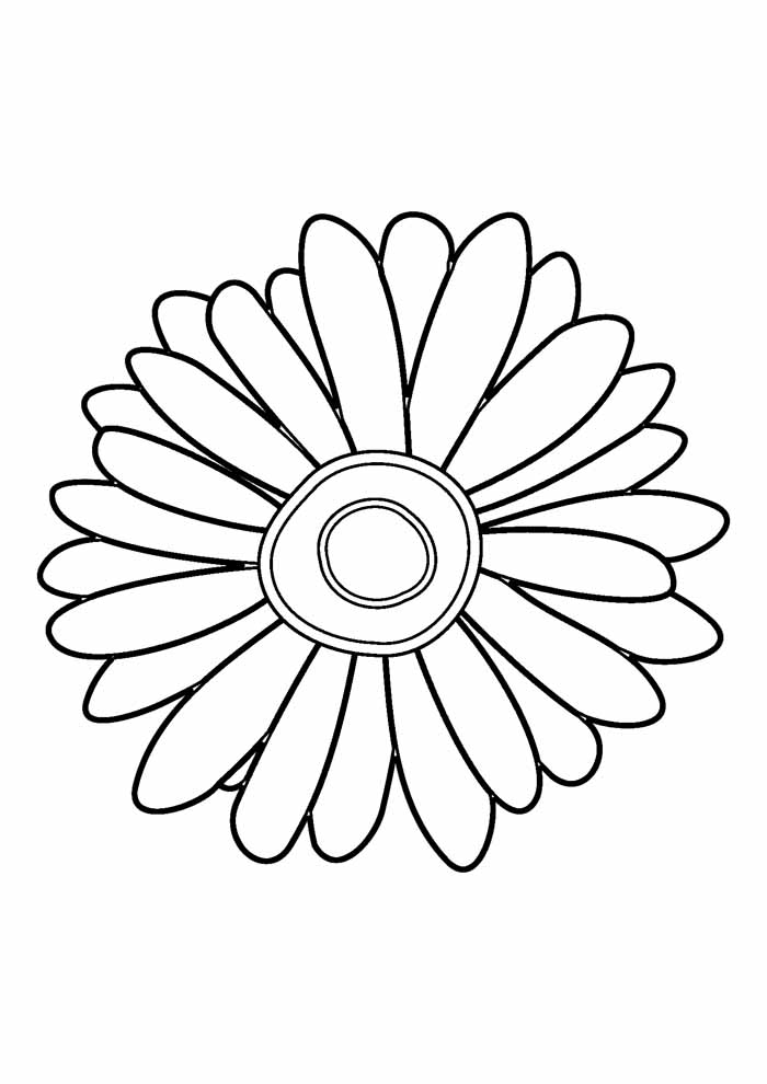 sunflower coloring page 16