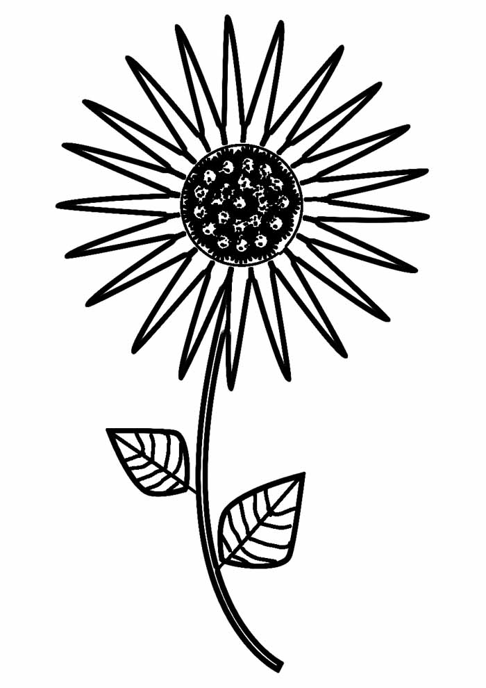 sunflower coloring page 17