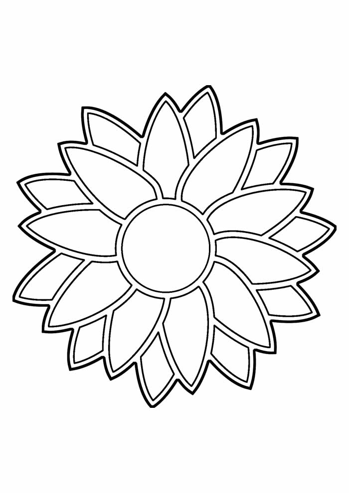 sunflower coloring page 20