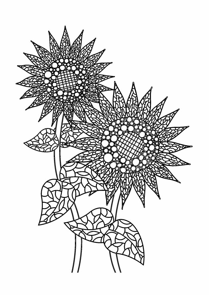 sunflower coloring page 33
