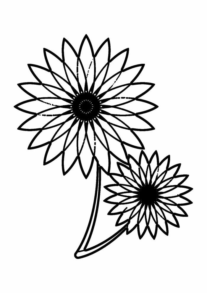sunflower coloring page 34