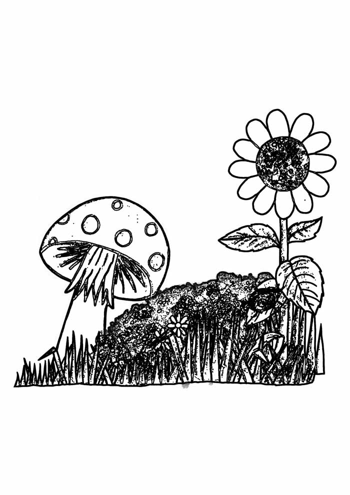 sunflower coloring page 37