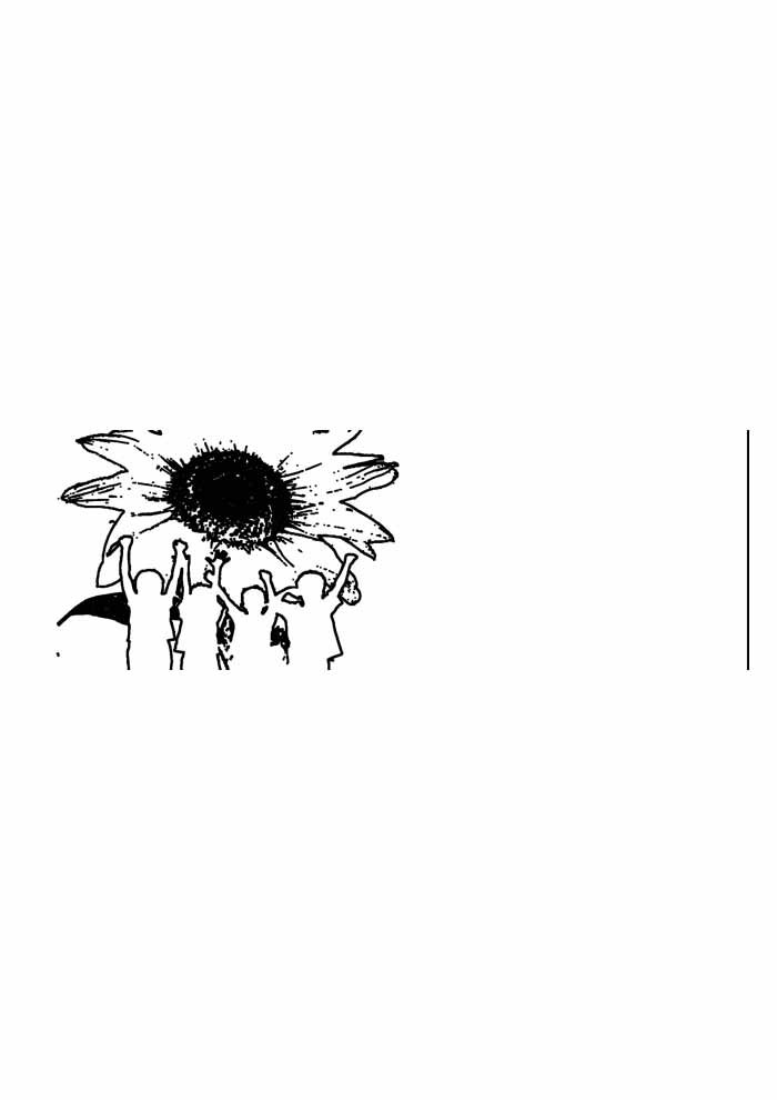 sunflower coloring page 38