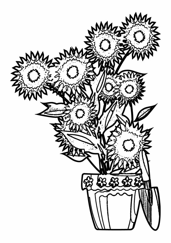 sunflower coloring page 8
