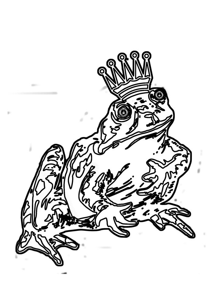 coloriage grenouille 23