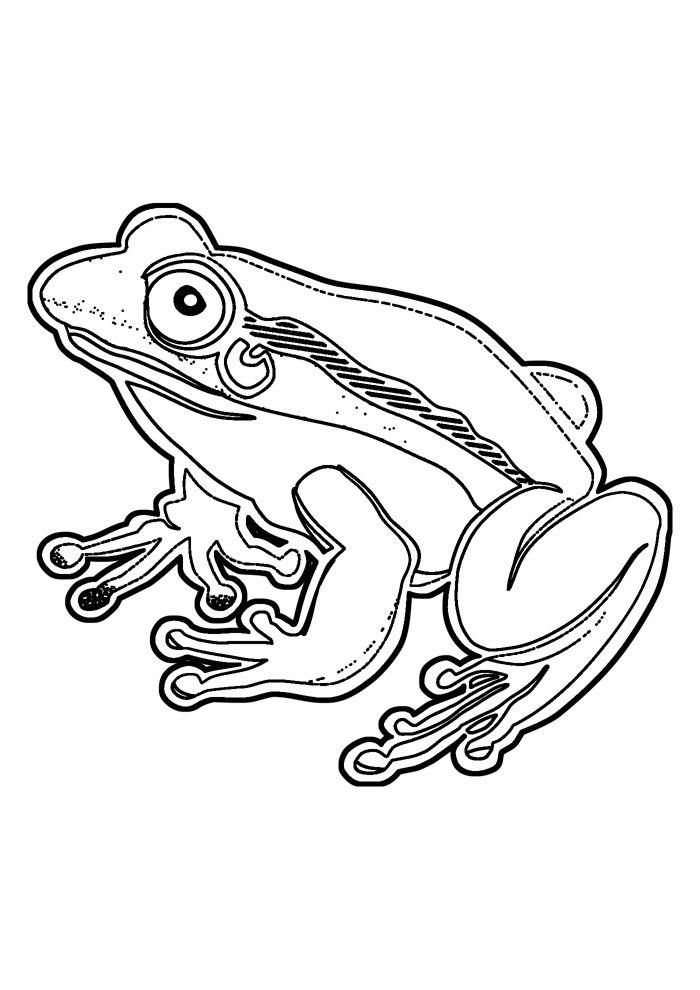 frog coloring page 1