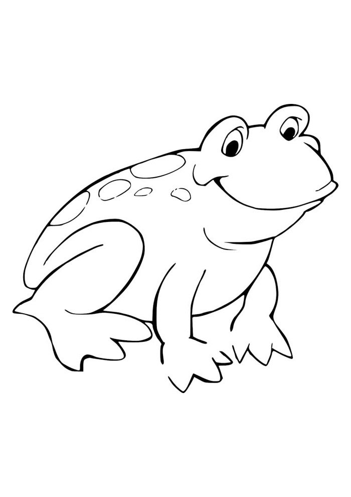frog coloring page 40